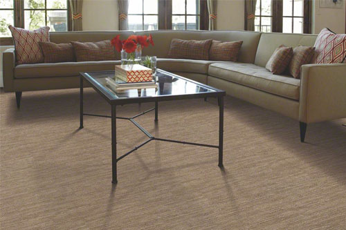 Loop Carpets